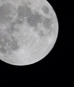 やまちゃん写真月