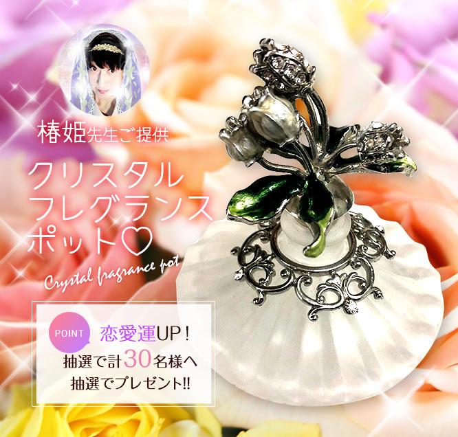 椿姫(つばき)先生からのプレゼント
